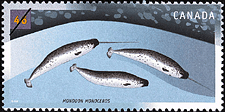 Canadian Postage Stamp (2000): Narwhal, Monodon monoceros