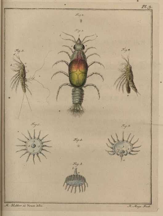 Slabber (1778, pl. 09)