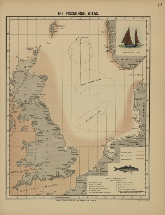 Olsen (1883, kaart 12)