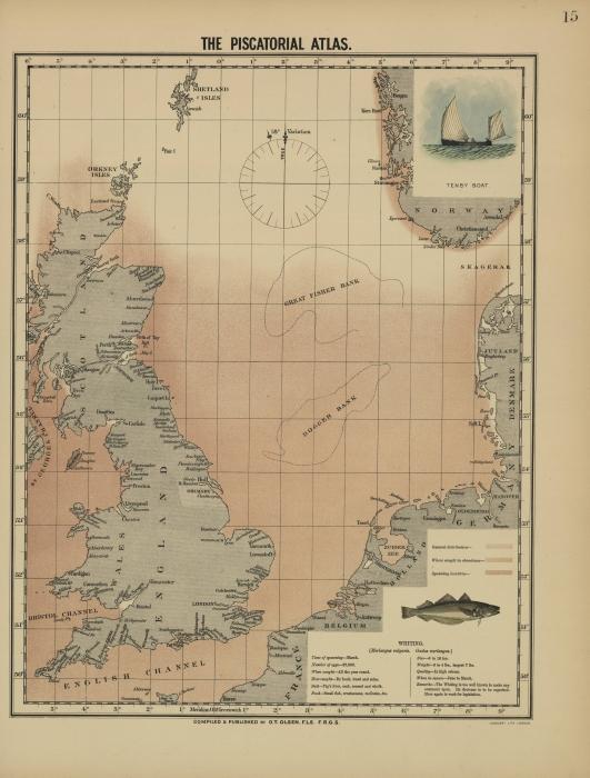 Olsen (1883, kaart 15)