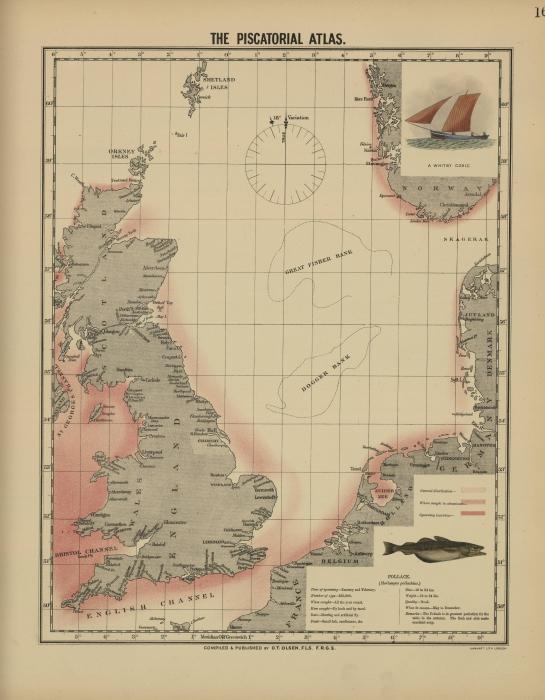 Olsen (1883, kaart 16)
