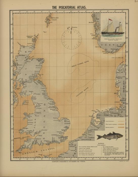 Olsen (1883, map 17)