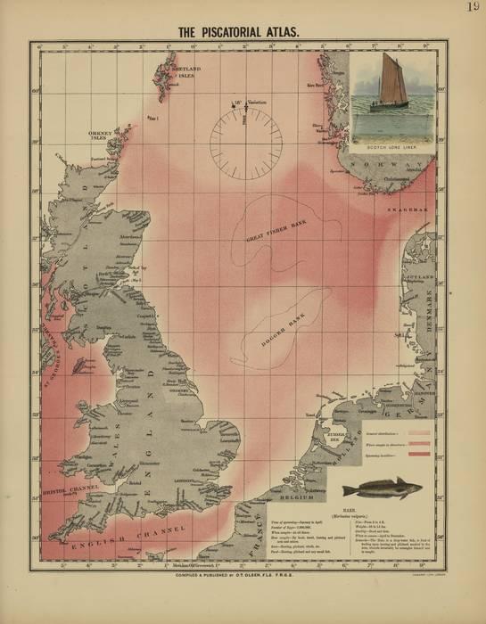 Olsen (1883, map 19)