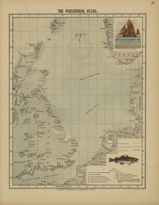 Olsen (1883, kaart 20)