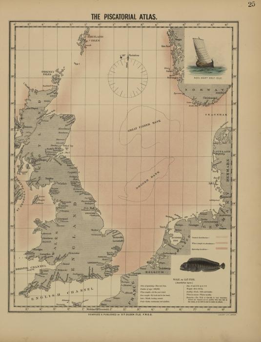 Olsen (1883, map 25)