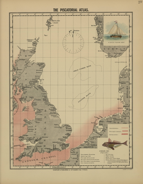 Olsen (1883, map 29)