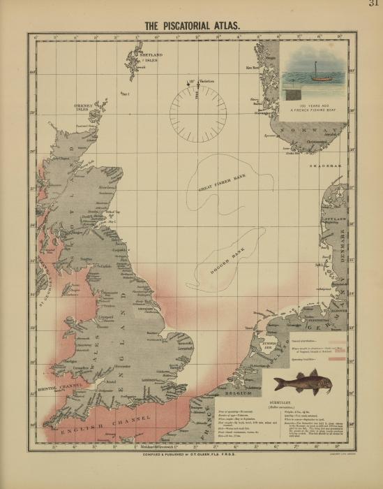 Olsen (1883, kaart 31)