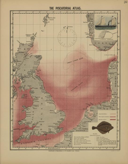 Olsen (1883, kaart 39)