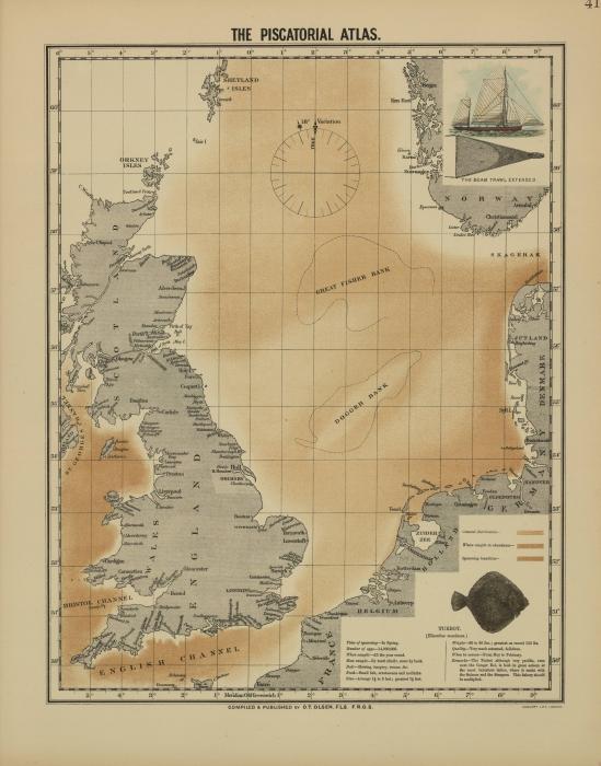 Olsen (1883, map 41)