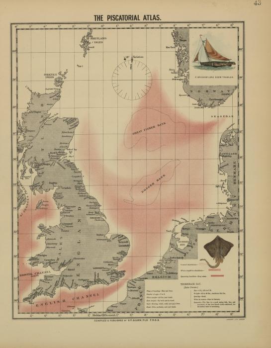 Olsen (1883, map 43)