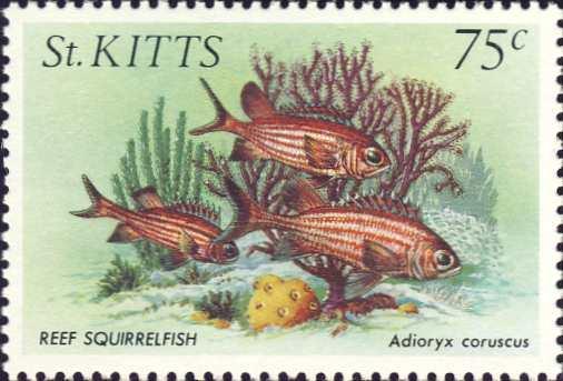 Adioryx coruscus