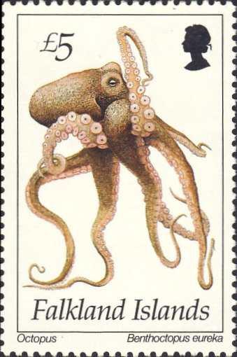 Benthoctopus eureka