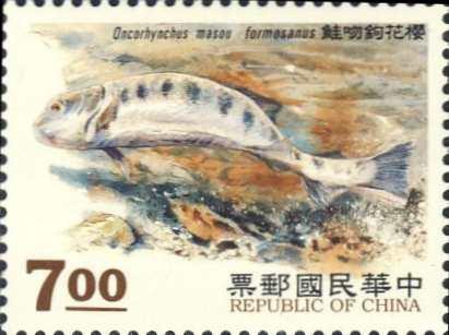 Oncorhynchus masou