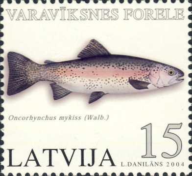 Oncorhynchus mykiss