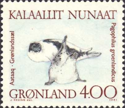 Pagophilus groenlandicus