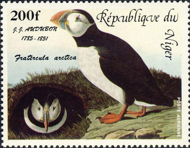 Fratercula arctica