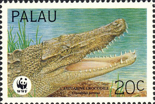 Crocodylus porosus