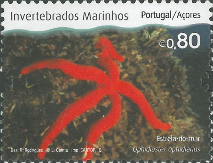 Ophidiaster ophidianus