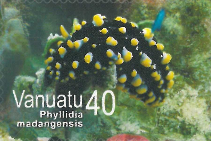 Phyllidia madangensis
