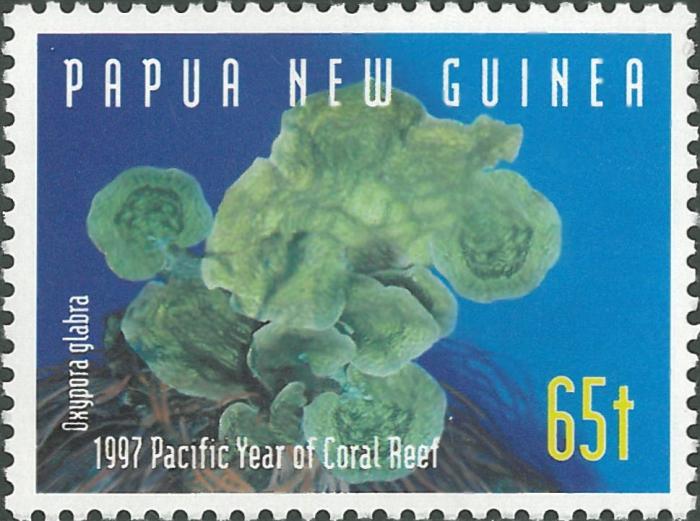 Oxypora glabra
