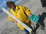 Lenteprikkel 2006