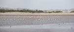 12.02.2014 Sabaki River