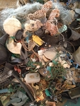 VLIZ website: Pollution and human health: Marine litter