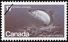 Canadian Postage Stamp (1980): Atlantic Whitefish, Coregonus canadensis