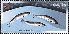 Canadian Postage Stamp (2000): Narwhal, Monodon monoceros