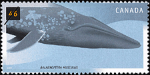 Canadian Postage Stamp (2000): Blue Whale, Balaenoptera musculus
