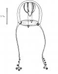 Zancleopsis elegans from Bouillon (1978c)