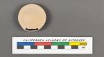 Biloculina depressa d'Orbigny, 1826