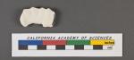 Vertebralina striata d'Orbigny, 1826