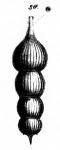 Nodosaria subradicula Schwager, 1866