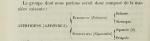 Original classification of Gephyrea by Quatrefages, 1847