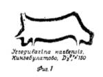 Irregularina karlensis Vissarionova, 1950