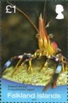 Campylonotus vagans