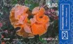 Reteporella beaniana