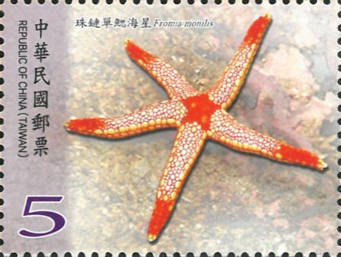 Fromia monilis