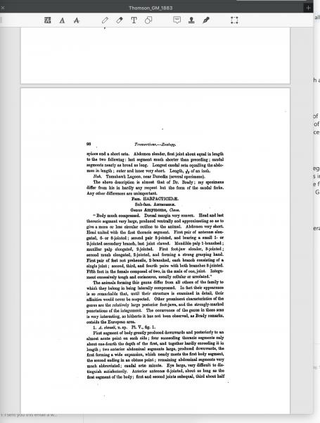 Thomson, G.M. 1883:98