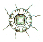 Nausithoe clausi medusa