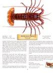 Western Rock Lobster