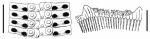 Acanthocidaris hastigera (ambulacral plates + primary spines)