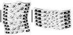 Stereocidaris grandis (ambulacral plates)