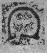 Eotuberitina crassa Poyarkov, 1961