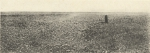 Massart (1908, foto 105)