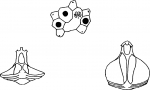 Amphipneustes mironovi