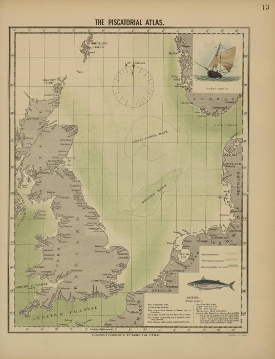 Olsen (1883, map 13)
