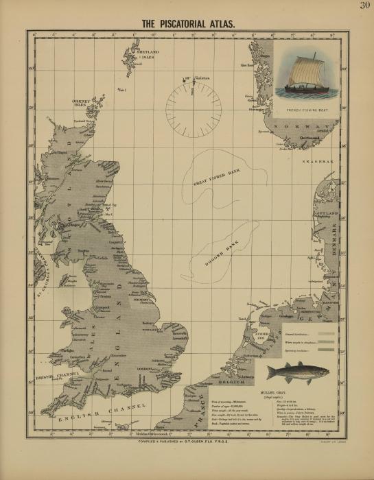 Olsen (1883, map 30)