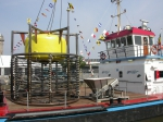 Fisheries & Agriculture
